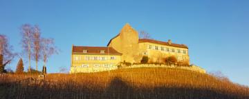 Unternehmerfeedback von Schloss Schwandegg
