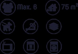 Icons Ausstattung