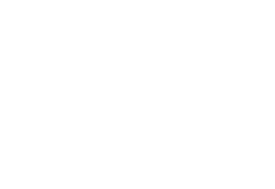 Icons Ausstattung hell