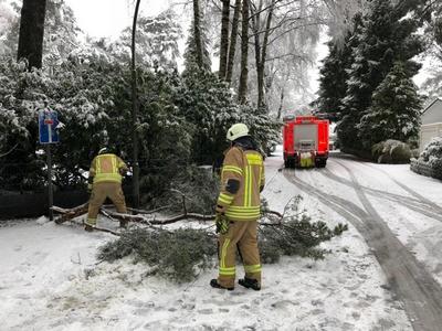 """18.01.2018: Zahlreiche Einsätze durch """"Friederike"""""""