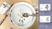 Heimisches Superfood – Borretschöl – Essenz für die Haut