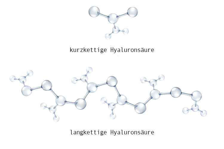 Hyaluronsäure Kette